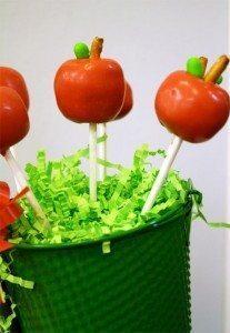 http://www.skiptomylou.org/demo/2011/08/17/apple-cake-pops/