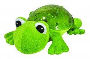 MultiSensory-Tranquil-Frog-PROD